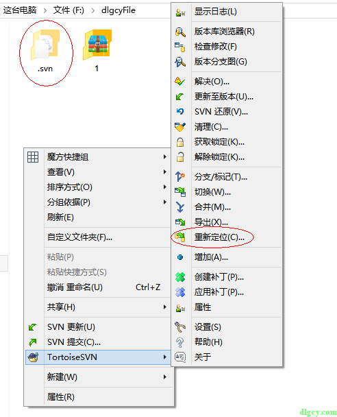 使用TortoiseSVN将某个SVN目录下的目录指向另一个仓库插图