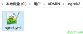 使用ngrok从外网连接内网的远程桌面插图